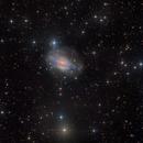 NGC 3521 - The Bubble Galaxy - LRGB by Insight Observatory :-),                                Daniel Nobre