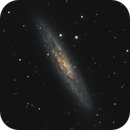 NGC253: Collimation Test image,                                Brian Boyle