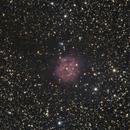 Cocoon Nebula - June 17, 2020,                                Adam Drake