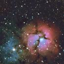 Trfiid Nebula,                                Michael Finan
