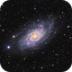 NGC 2403, A Beautiful Flocculent Galaxy in Camelopardalis,                                John Hayes
