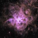 NGC 2070 - Tarantula nebula in narrowband bicolour,                                LucasB