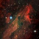 Pelican Nebula,                                Monty Giavelli