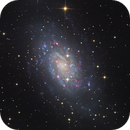 NGC 2403 in the constellation Camelopardalis,                                Thomas Richter