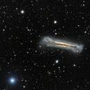 NGC 3628,                    Roger Gifkins