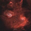 Flaming star nebula complex,                                Shadi Nassri