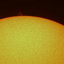 Sun-02.04.20-Coronado PST-single stack-Barlowx2,                                Adel Kildeev