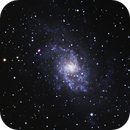 M33 - Triangulum Galaxy,                                Ray Ellersick