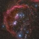 Constellation Orion,                                Anna Morris
