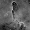 IC1396 The Elephant's Trunk in Ha,                                Erik Guneriussen