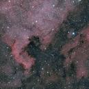 North America and Pelican Nebulae,                                t-ara-fan