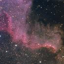 Cygnus Wall,                                HUGO S GARNICA