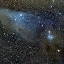 IC 4592 Blue Horse Nebula,                                Andrés González