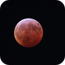 Total Lunar Eclipse 2019,                                alphaastro (Rüdiger)
