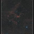 Flying Dragon Nebula, Sh2-113, Sh2-114,                                rflinn68