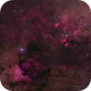North America Nebula & Gamma Cygni Region,                                David McGarvey