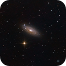NGC2841,                                Scott Tucker