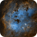 """IC 410 """"The Tadpoles"""" in SHO,                                Alex Roberts"""