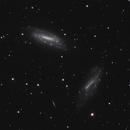 NGC 672 & IC 1727,                                Gary Imm