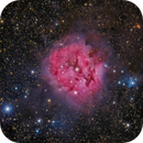 IC 5146 The Colorful Cocoon,                                John Hayes