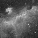 IC 2177 - Seagull Nebula in Monoceros - H-Alpha,                    Ray Caro