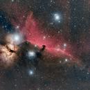 IC434 The Horsehead Region,                                bclary