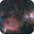 The belt and sword of Orion,                                SergeyGN