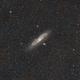 Messier 31,                                Stéphane RONGERE