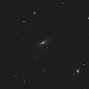 M102,                                MarkusB