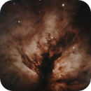 NGC 2024 - Flame Nebula,                                Roberto Sartori