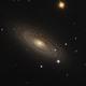 Tiger's Eye Galaxy,                                stricnine