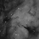 IC 1318 Butterfly Nebula RC6 revision,                                Alan Hancox
