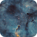 IC1396 in Narrowband,                                Muhammad Ali