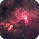 The Statue of Liberty Nebula - NGC 3576,                                Delberson