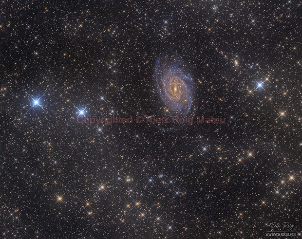 NGC6744 spiral galaxy surrounded by IFN,                                Aleix Roig