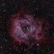 Rosette Nebula wide field (Ha/Oiii bi-color),                                rdk_CA