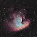 Pacman Ha / OIII Bi-Colour,                                Michael Poelzl