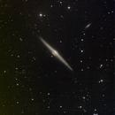 NGC4565(Needle galaxy),                                simon harding