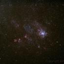 NGC 2070,                                Astro-Rudi