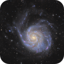 M101 the Pinwheel Galaxy,                                tommy_nawratil