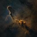 Elephant Trunk - HSO Starless,                                Jonathan Piques