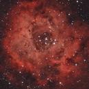 Rosette Nebula,                                Cfreerksen