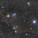 LDN1235 - Dark shark neubla,                                Miroslav Horvat
