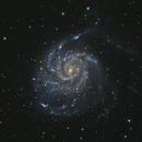 M101,                                Marc Ricard