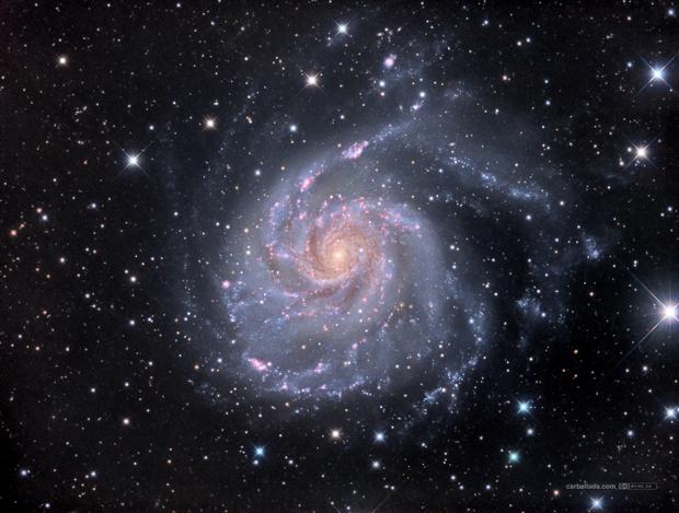 Pinwheel Galaxy (M101) in HaLRGB,                                Jose Carballada