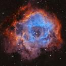 Rosette Nebula NGC 2237,                                David Dvali