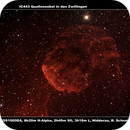 IC443 Quallennebel in den Zwillingen,                                Berthold Schneider