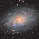 M33,                                Fan