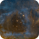 Rosette Nebula, NGC 2237 in SHO,                                Madratter