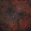 IC 1396,                                Jan